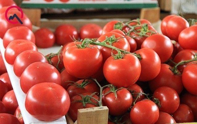 Avropa Birliyinin təmsilçisi də pomidorumuzdan danışdı