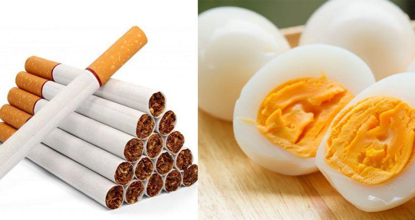 Yumurta istehsalı azalıb, siqaret istehsalı artıb