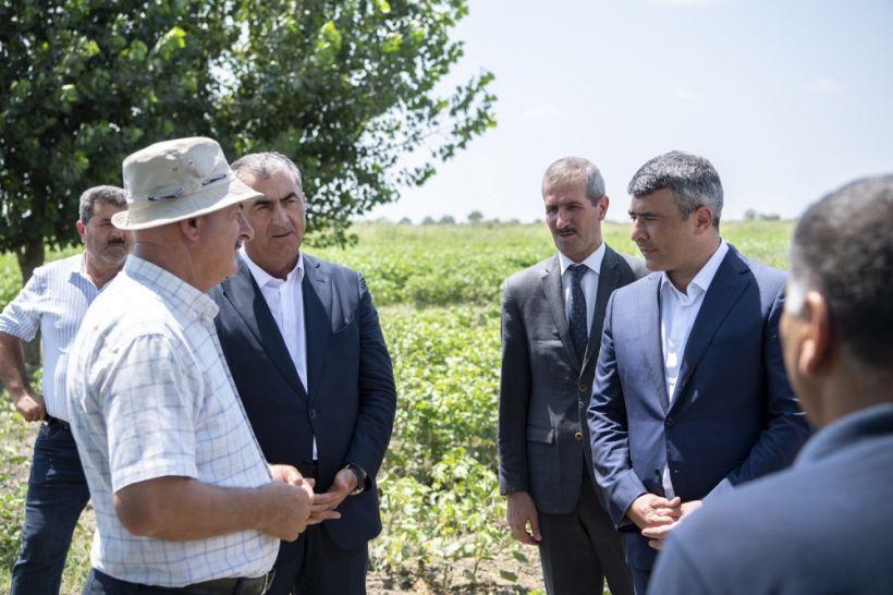 İnam Kərimov Salyanda pambıqçılarla görüşüb